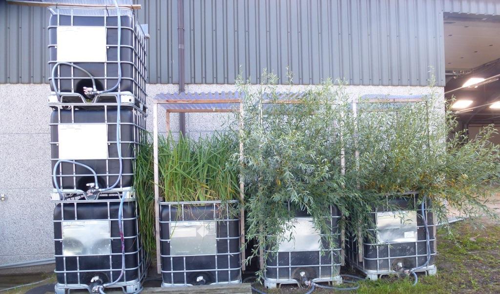 Bouw je eigen biofilter waterportaal for Bouw je eigen badkamer